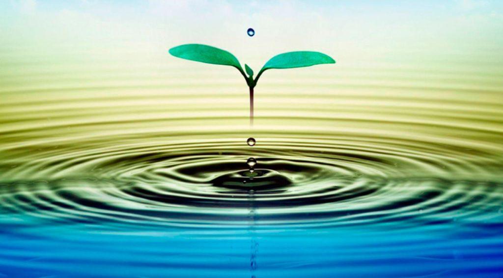 Oración para bendecir el agua